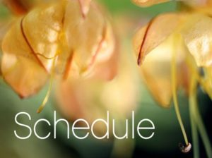 Catherine Ingram's Schedule